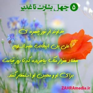 Zahramedia (17)