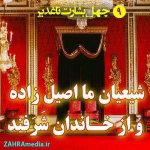 Zahramedia (21)