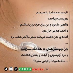 zahramedia5